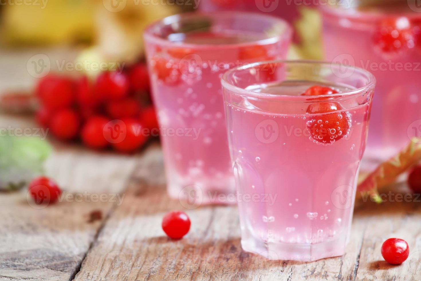 cocktail rose avec viorne, canneberge et sorbier photo