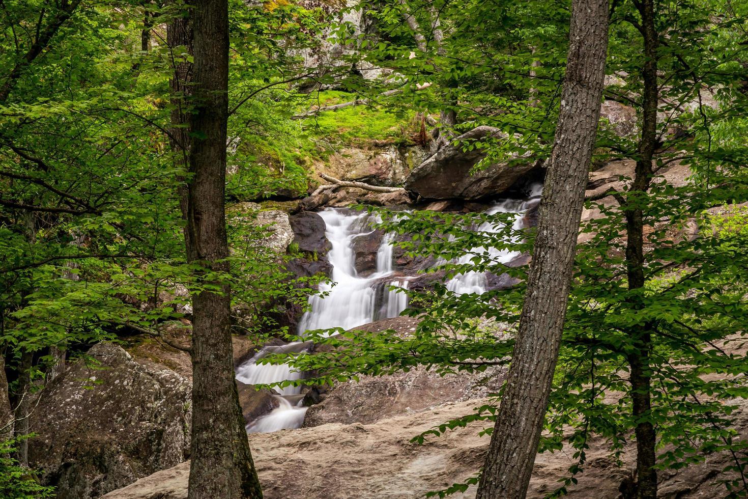 Cunningham Falls dans le Maryland photo