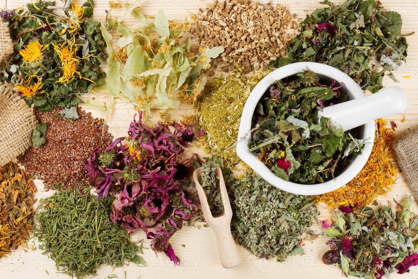 une variété d'herbes médicinales et de mortier et pilon sur table photo