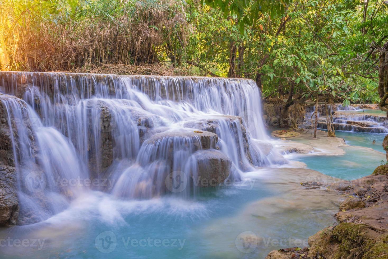 cascade dans la forêt tropicale (cascades de tat kuang si au laos. photo
