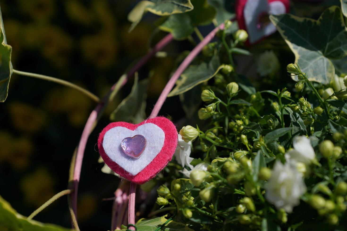 coeur, amour, plante, strauss, bricoler, pierre, tissu photo