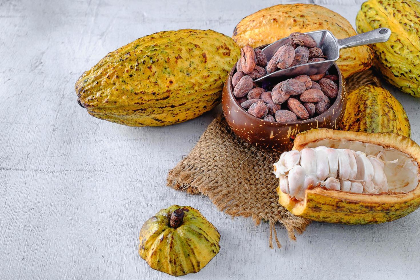 cacao frais avec cabosses de cacao et fèves de cacao photo