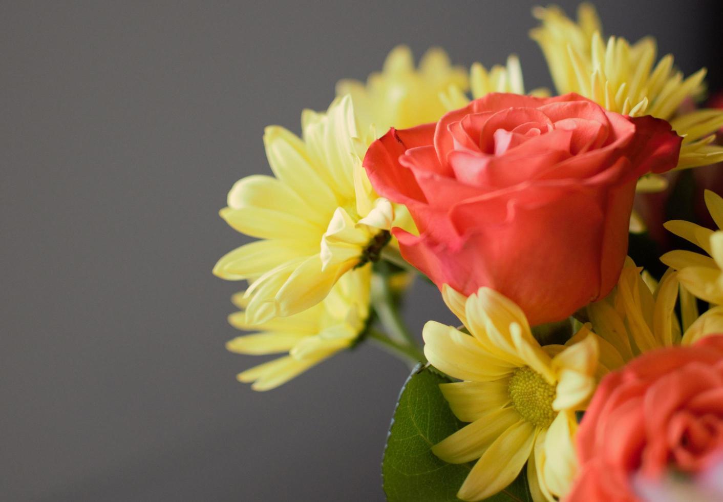 gros plan de fleurs rouges et jaunes photo