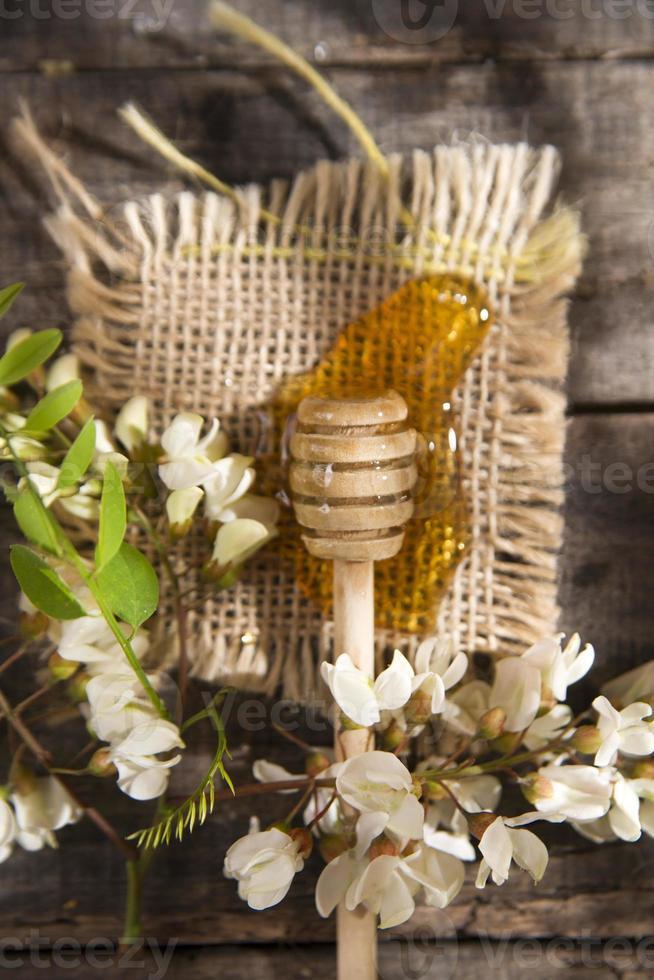 miel d'acacia photo