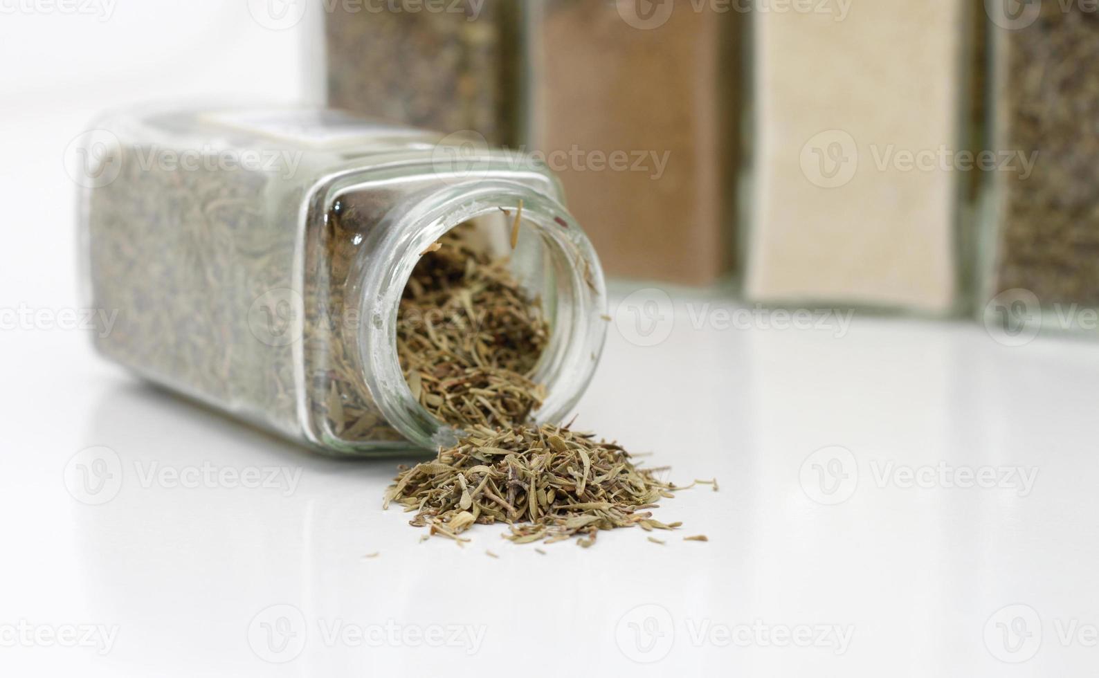 herbe de thym sur fond blanc photo