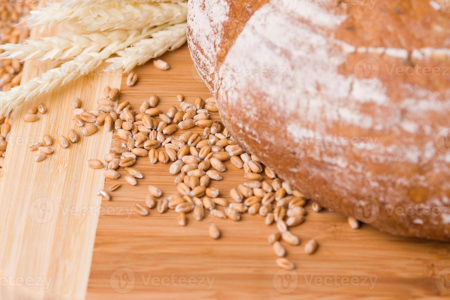 grains de blé et pain photo