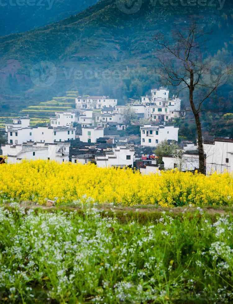 Paysage rural dans le comté de Wuyuan, province du Jiangxi, Chine photo