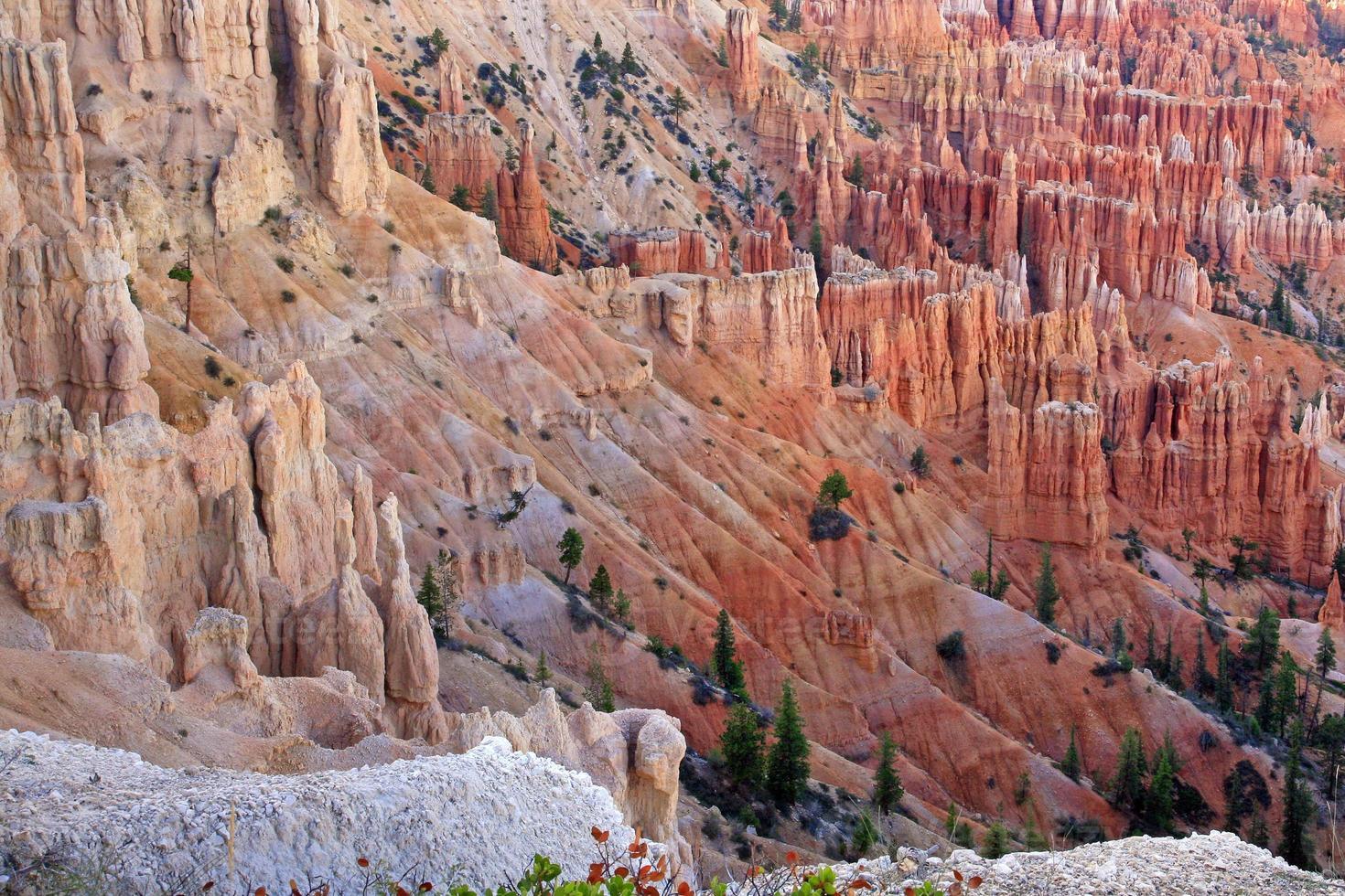 de grandes flèches creusées par l'érosion dans le canyon de bryce photo