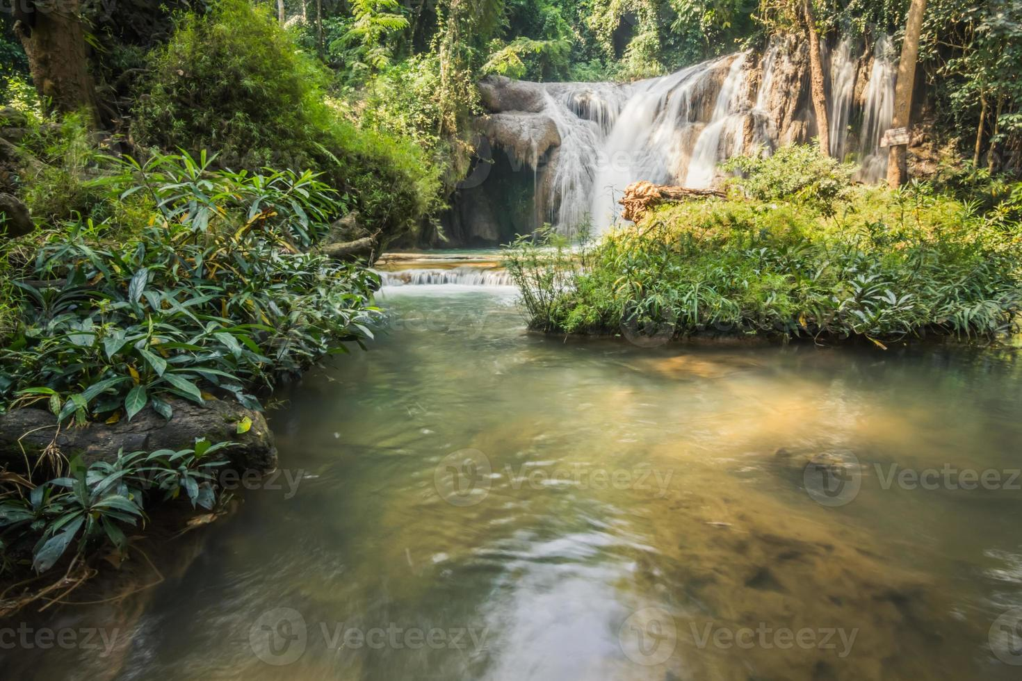 cascade en forêt photo