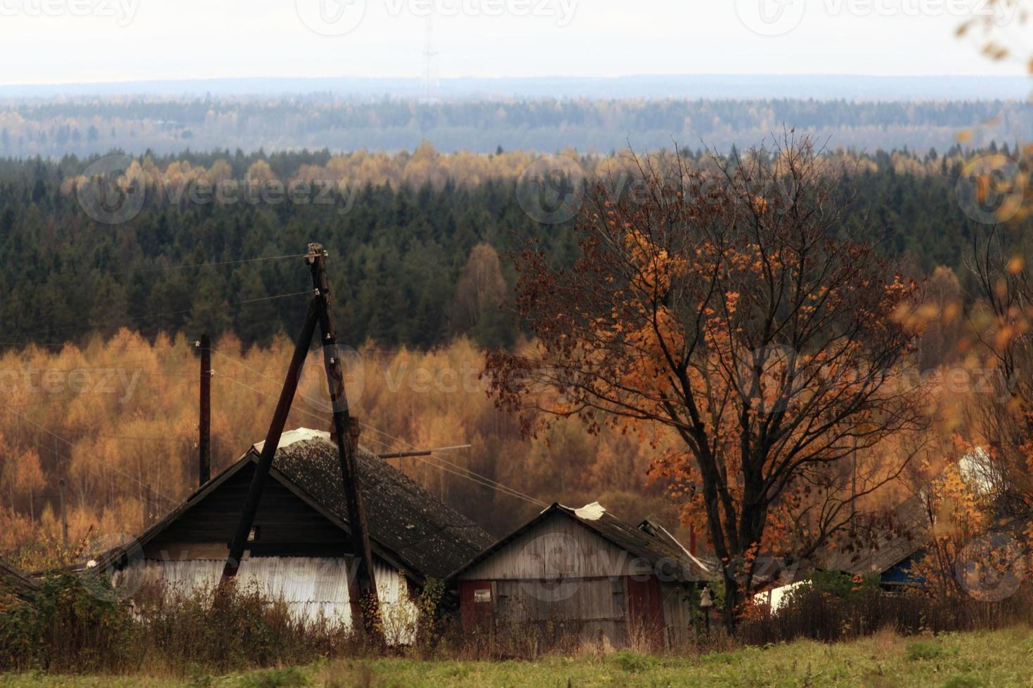 maison de campagne en bois photo