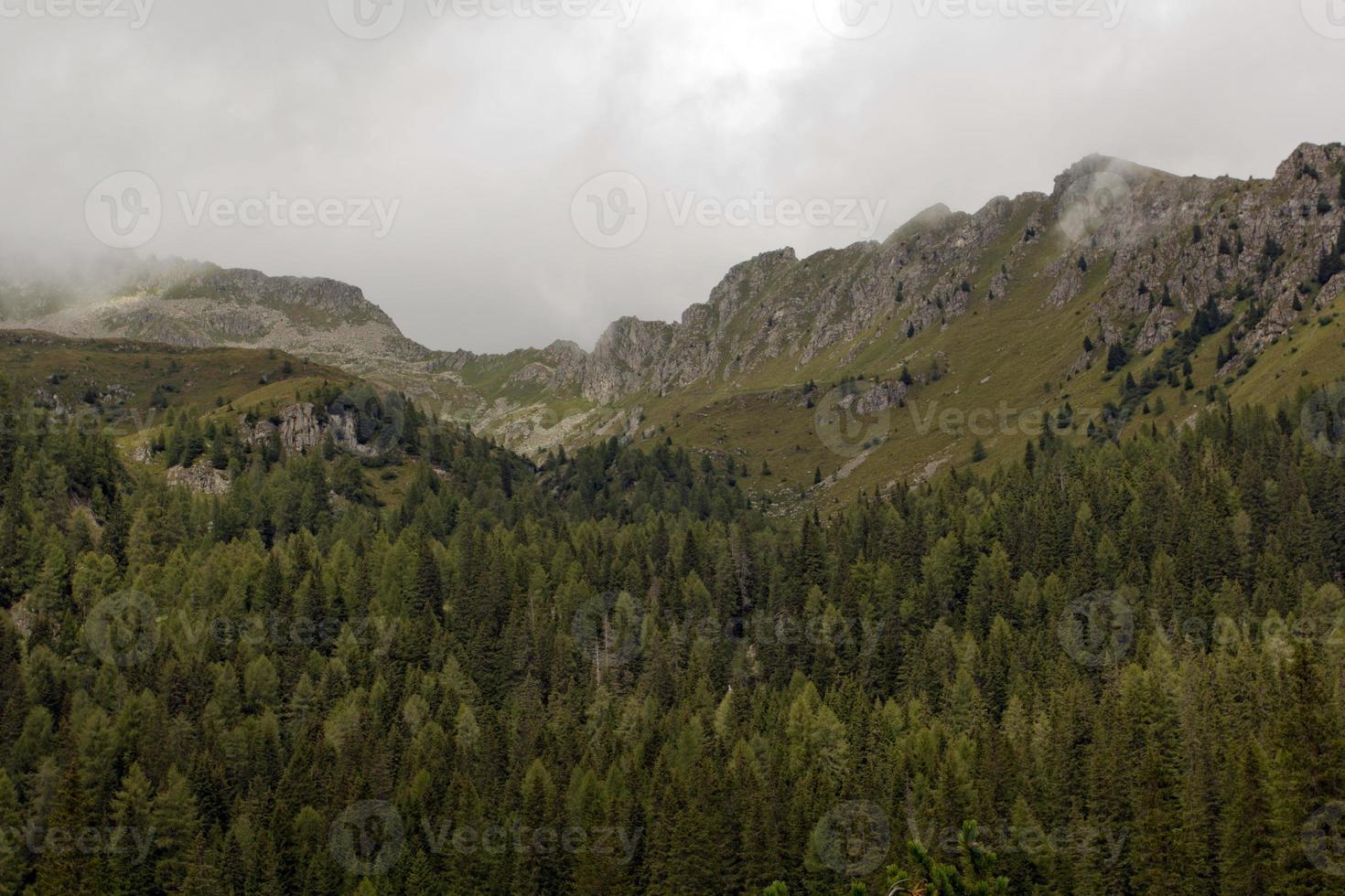 parc naturel d'Adamello photo