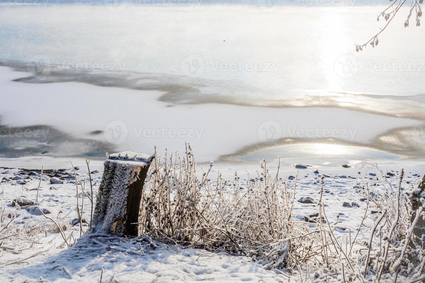souche sur fond d'une rivière gelée photo