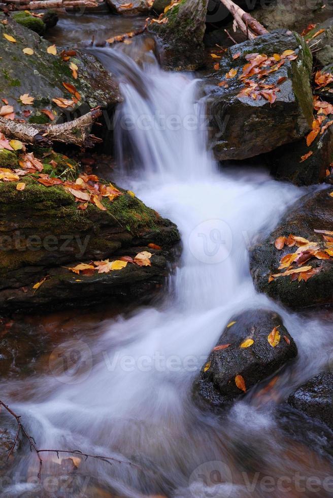 ruisseau photo