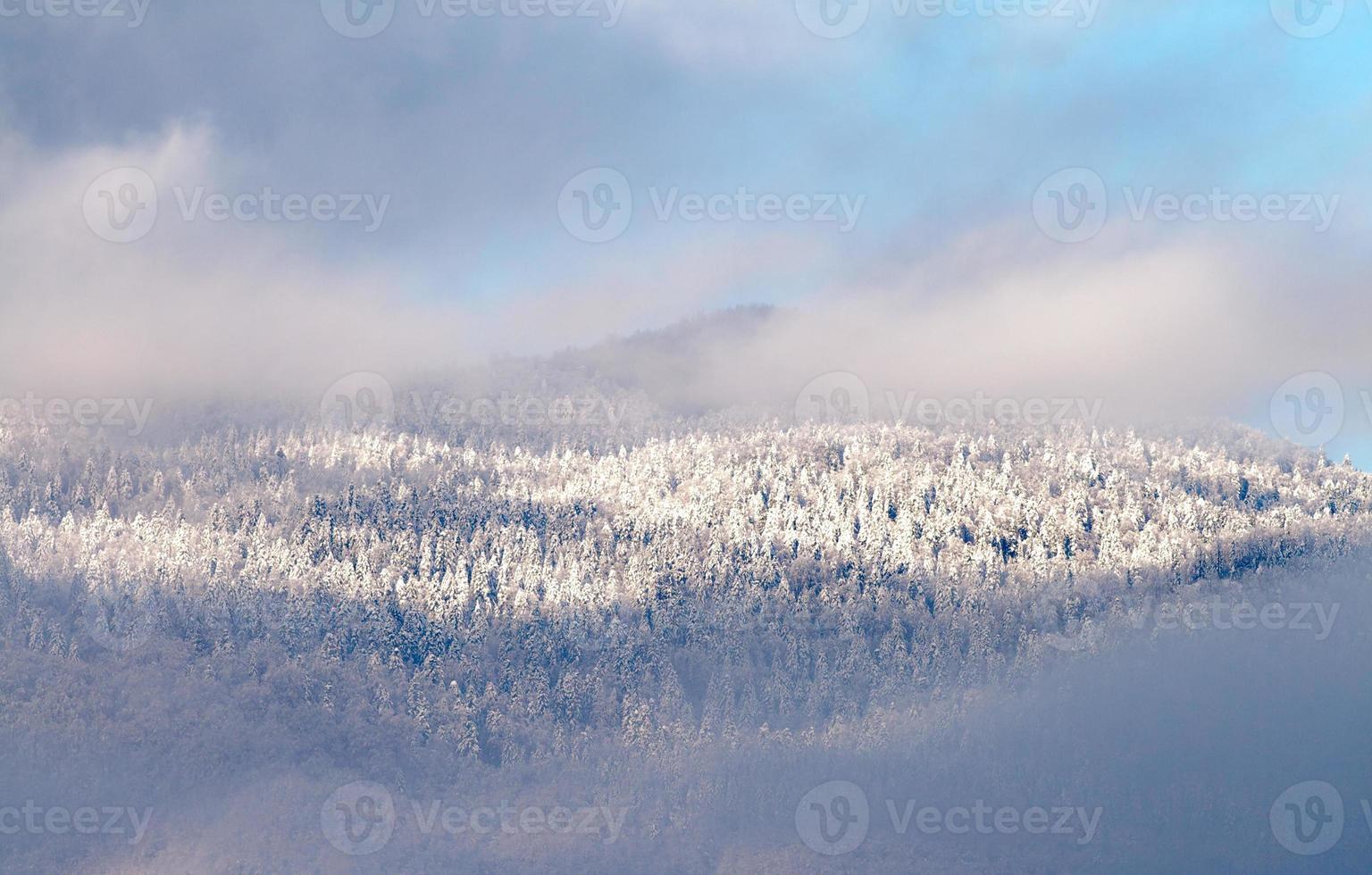 Mountin top dans la brume photo