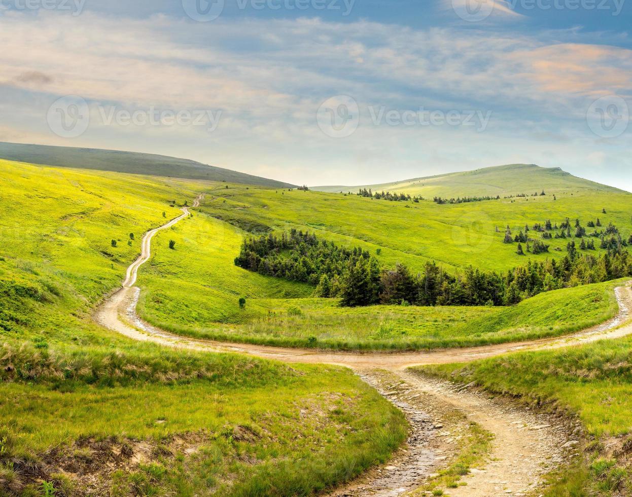 Traverser la route sur la prairie à flanc de colline en montagne au lever du soleil photo