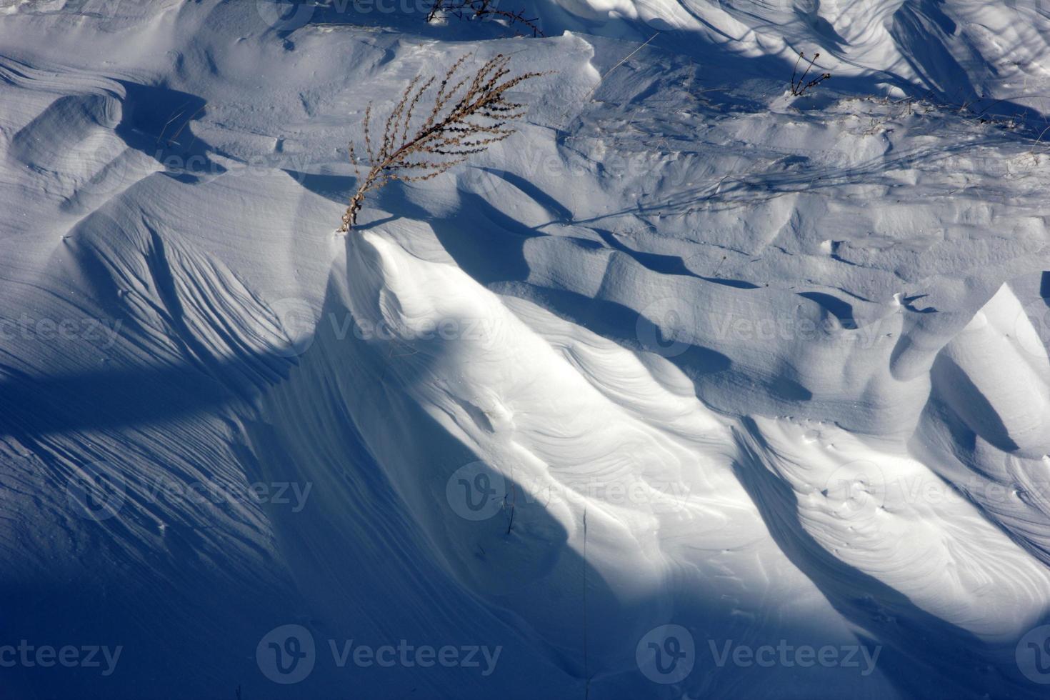 neige photo