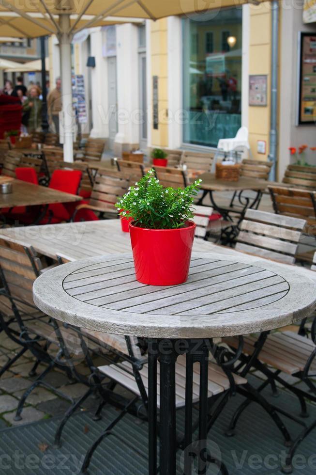 mignonne petite plante en pot sur la table extérieure. photo