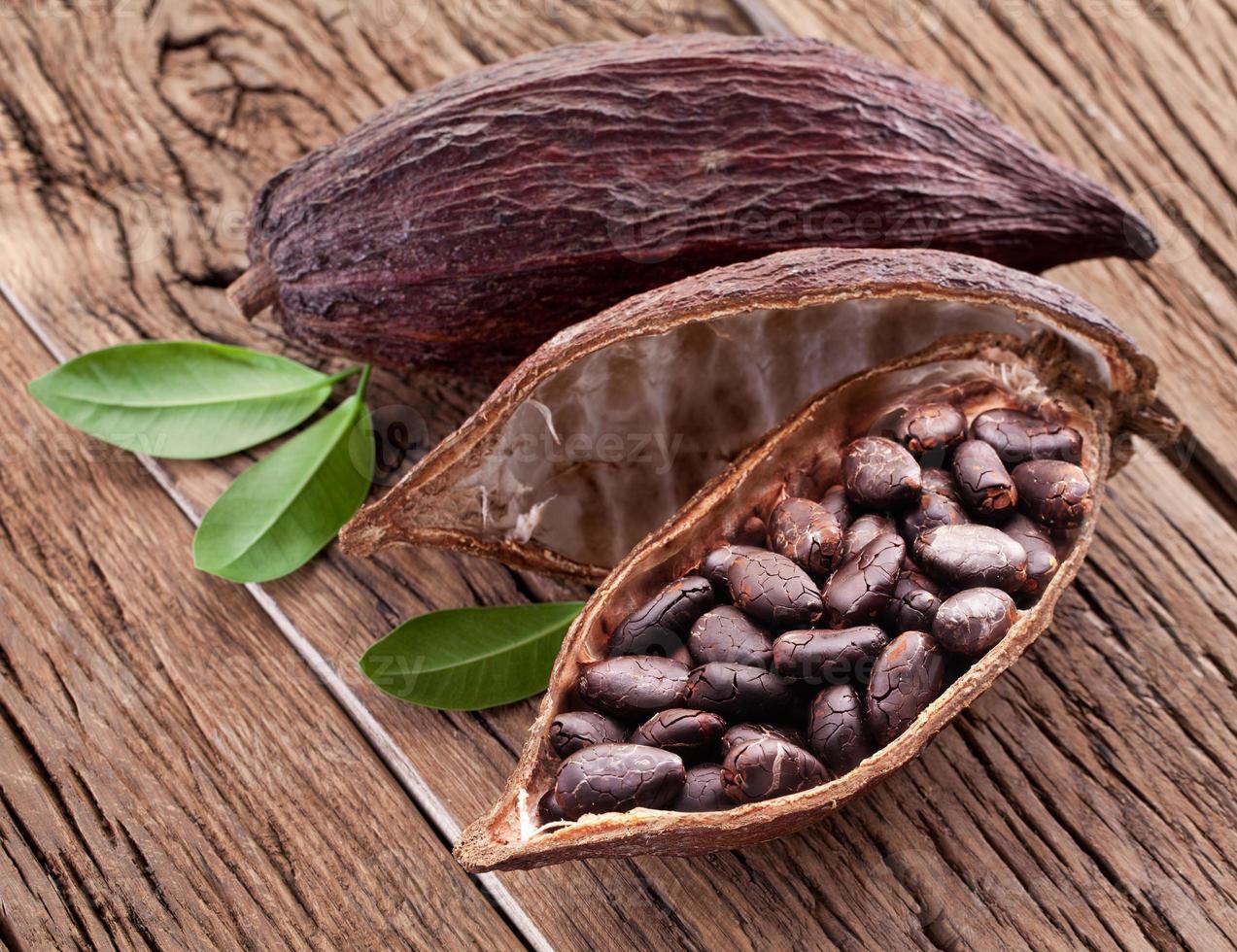 cabosses de cacao photo