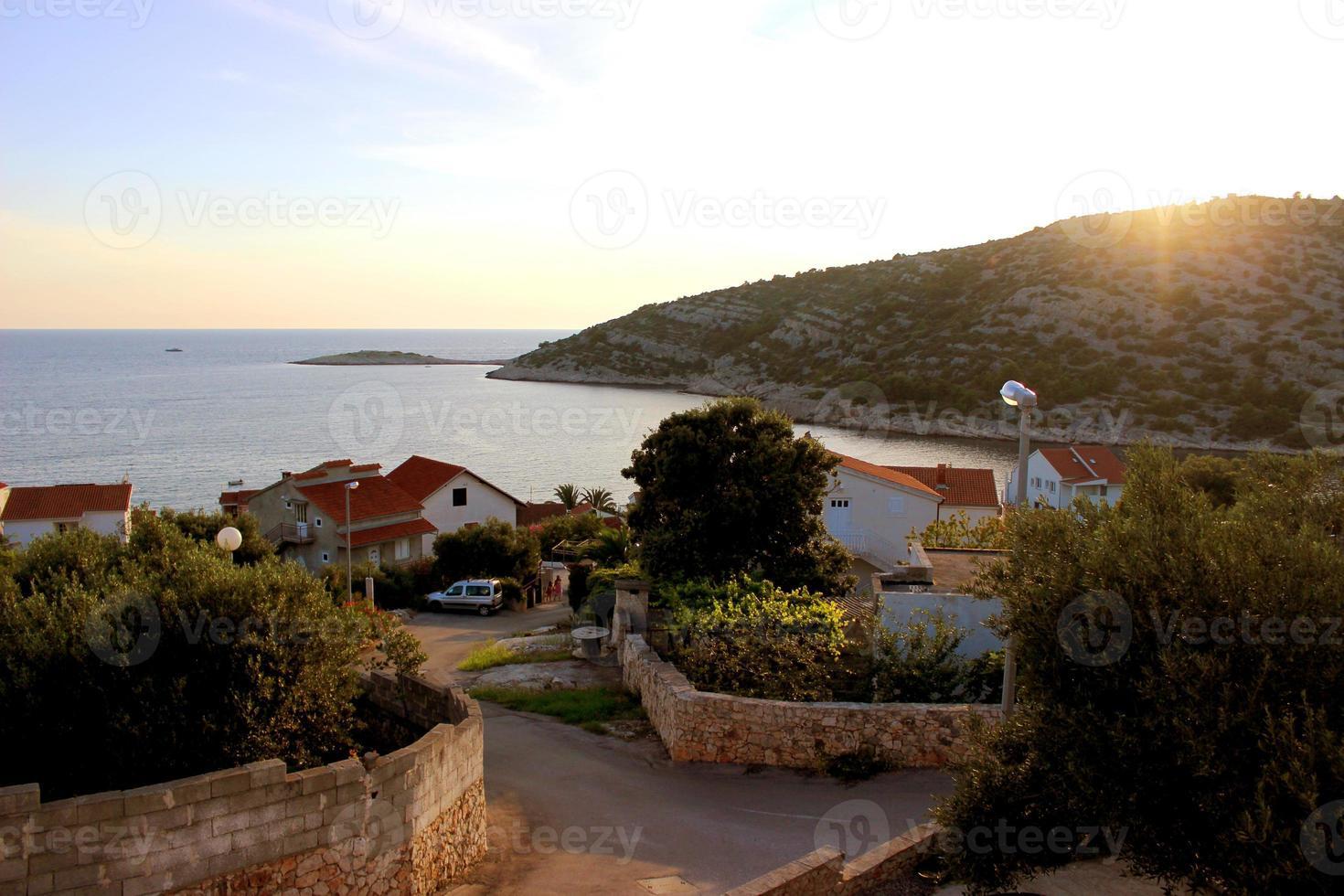 Dalmatie photo
