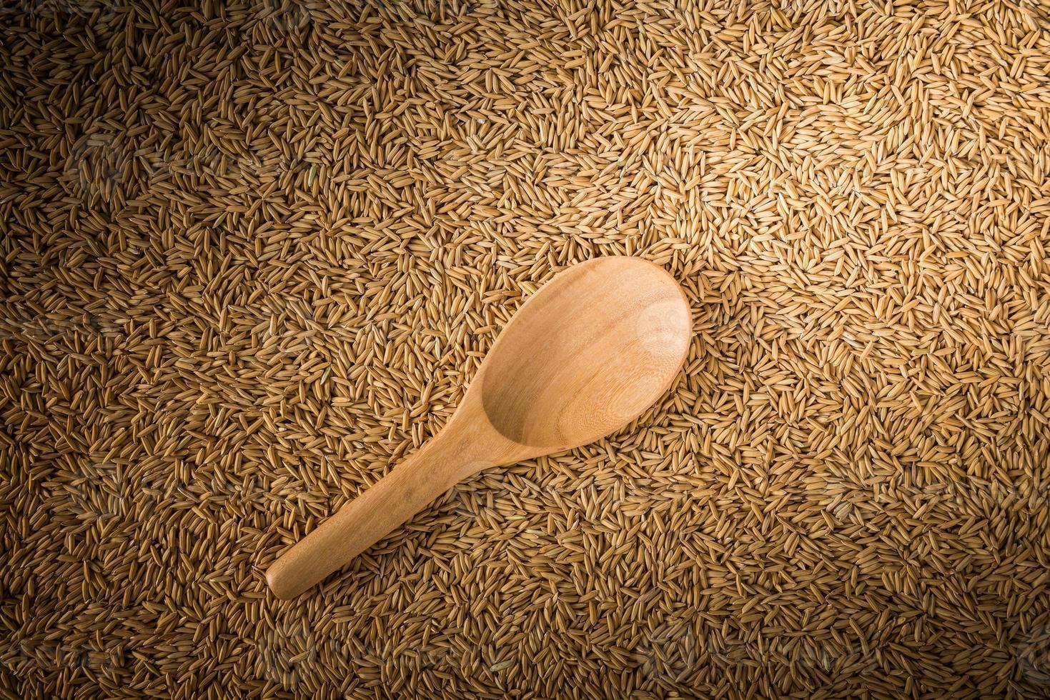 Louches en bois sur fond de riz paddy photo