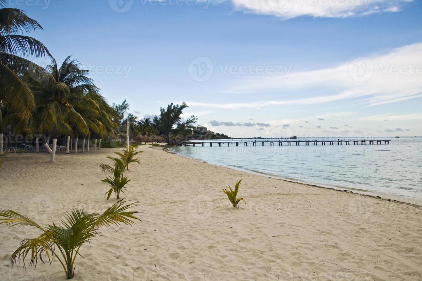 playa lancheros, isla mujeres, méxico photo