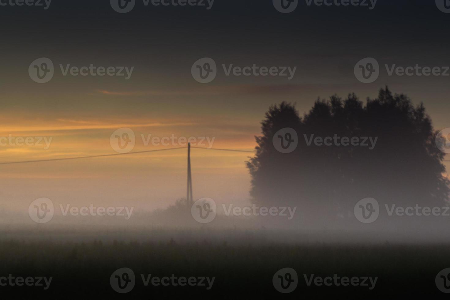 les champs et la brume photo