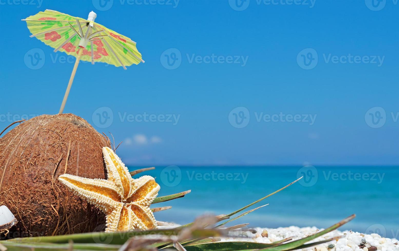 noix de coco sous parasol photo