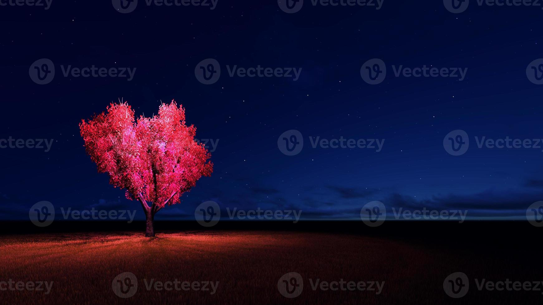arbre coeur photo