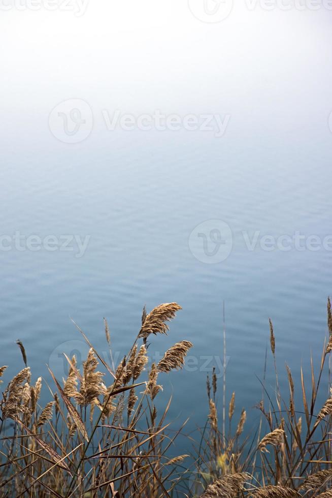 surface de l'eau photo