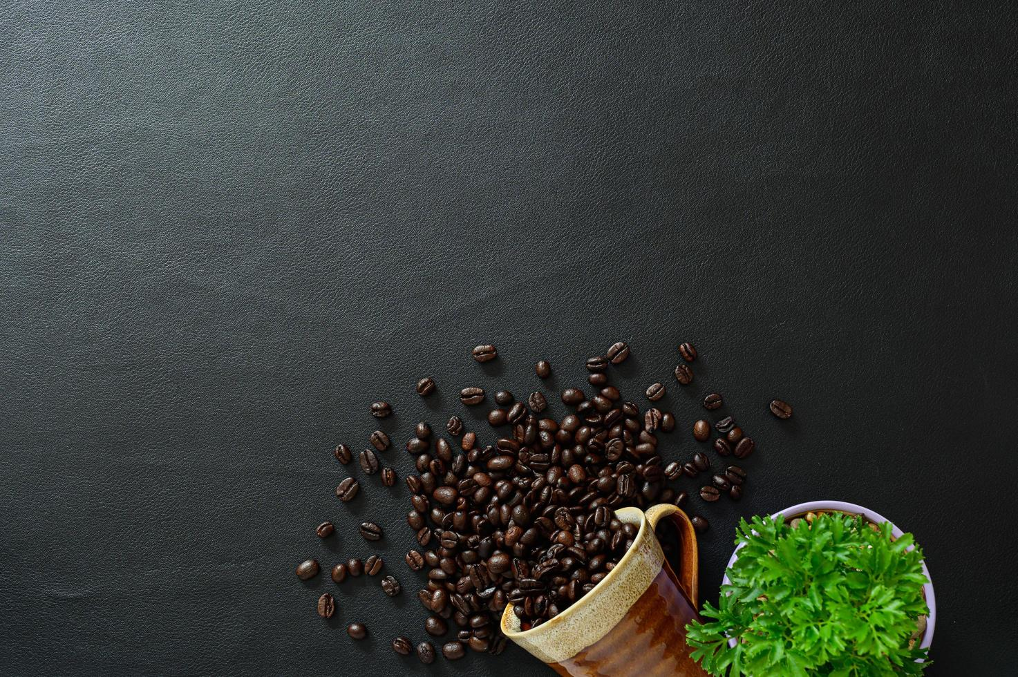 grains de café et pot de fleurs sur le bureau photo