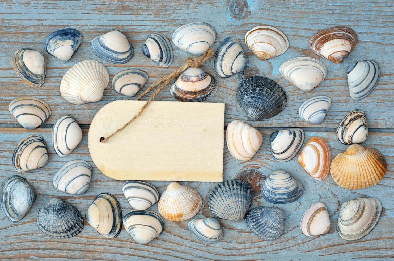 fond en bois bleu avec des coquillages et étiquette vide étiquette photo