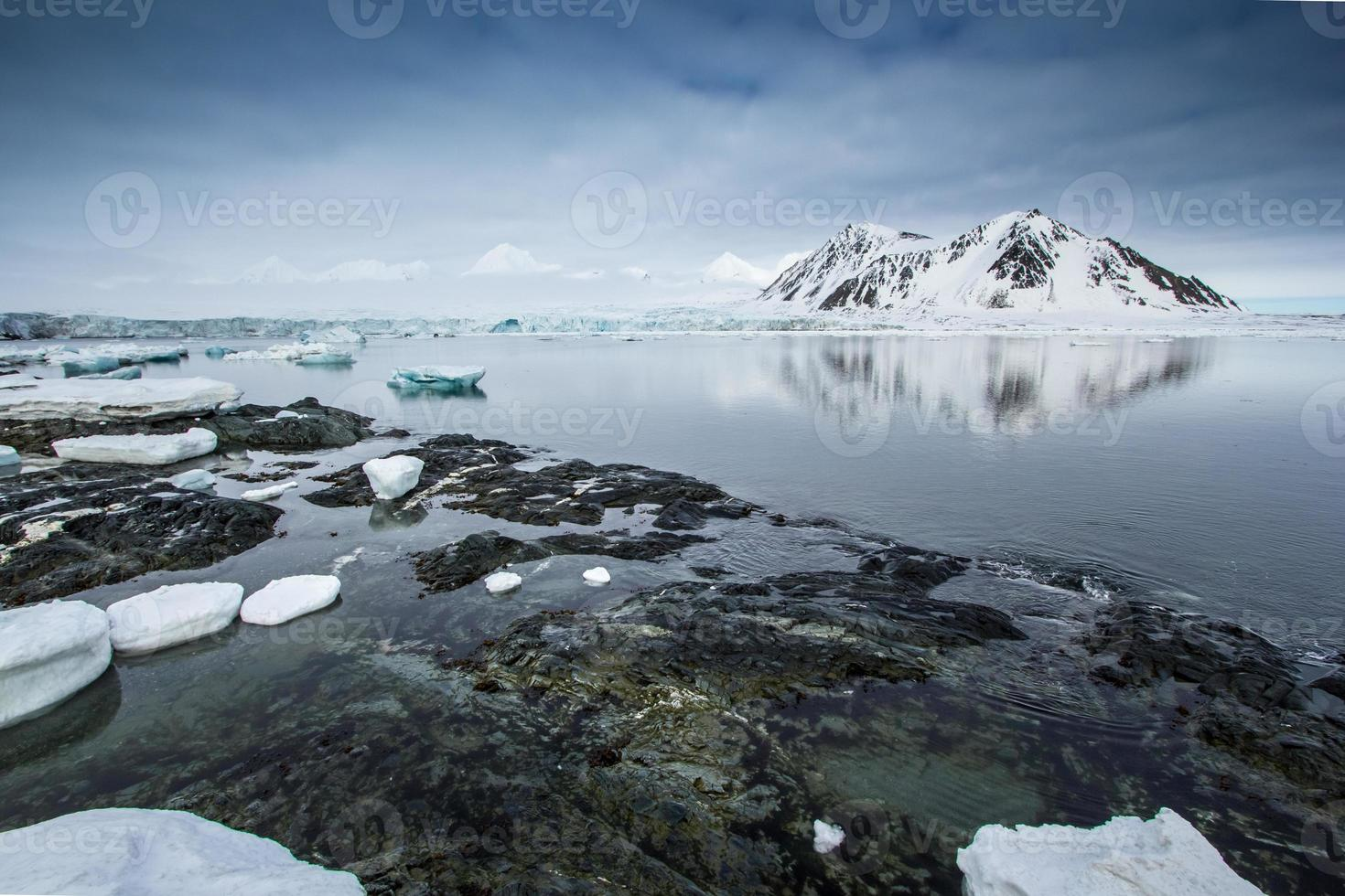 Printemps arctique au Spitzberg photo