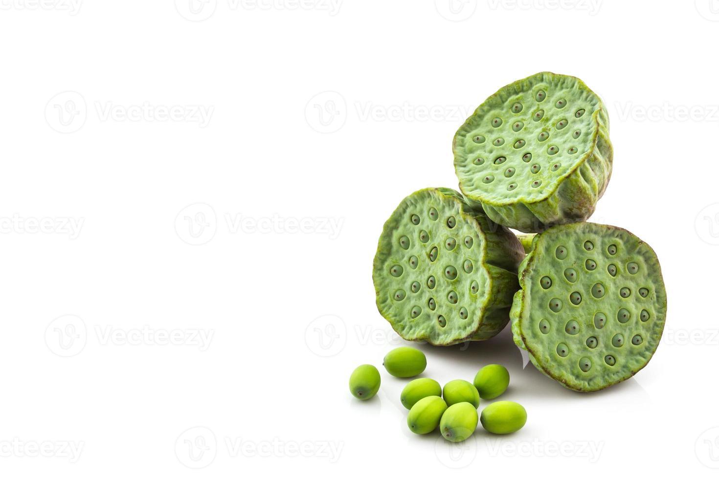 calice, graines de lotus vertes. photo