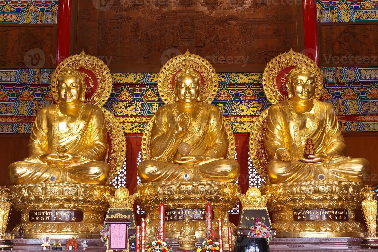 grands bouddhas dorés photo