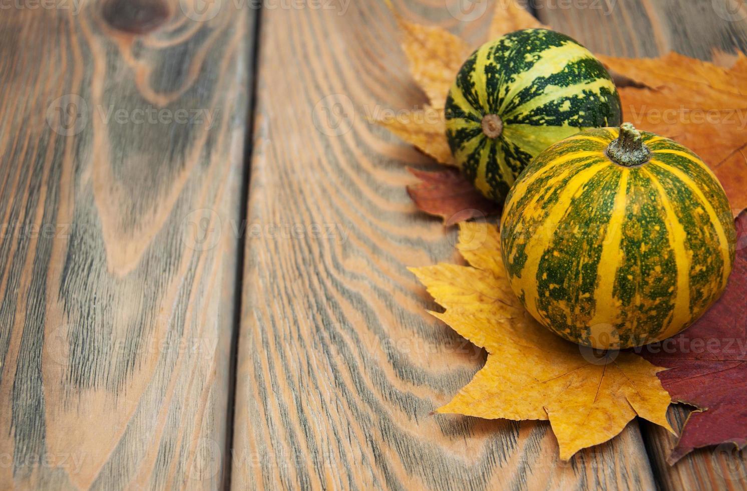 citrouilles d'automne photo