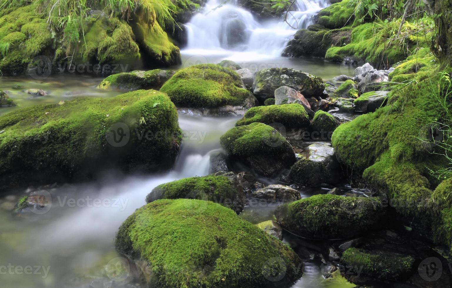 cascade. photo