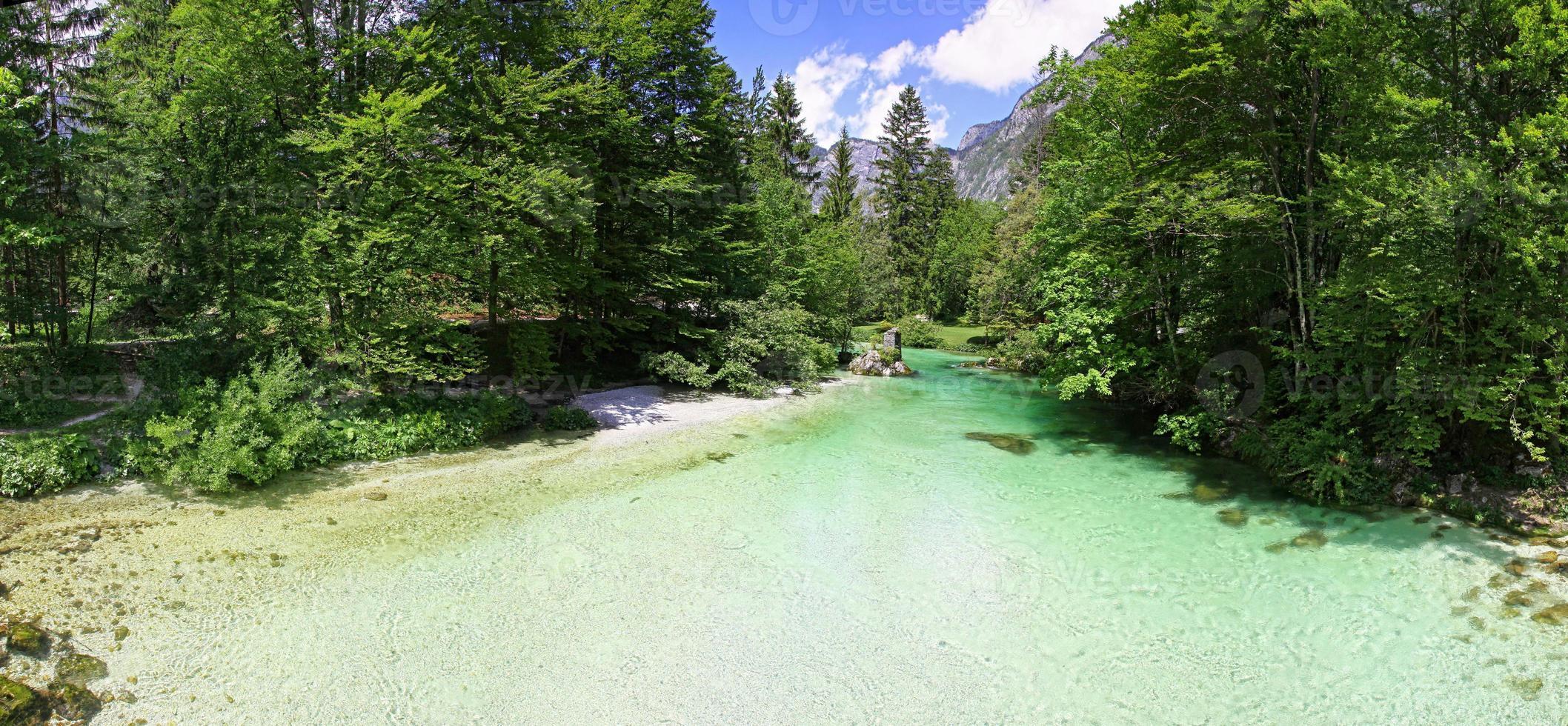 Sava Bohinjka River dans les Alpes juliennes, Slovénie photo