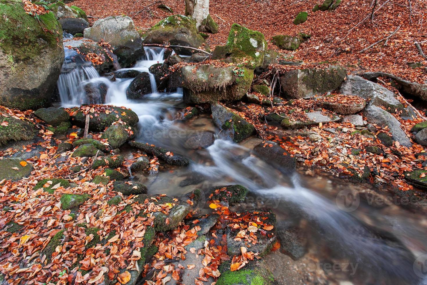 ruisseau en automne photo