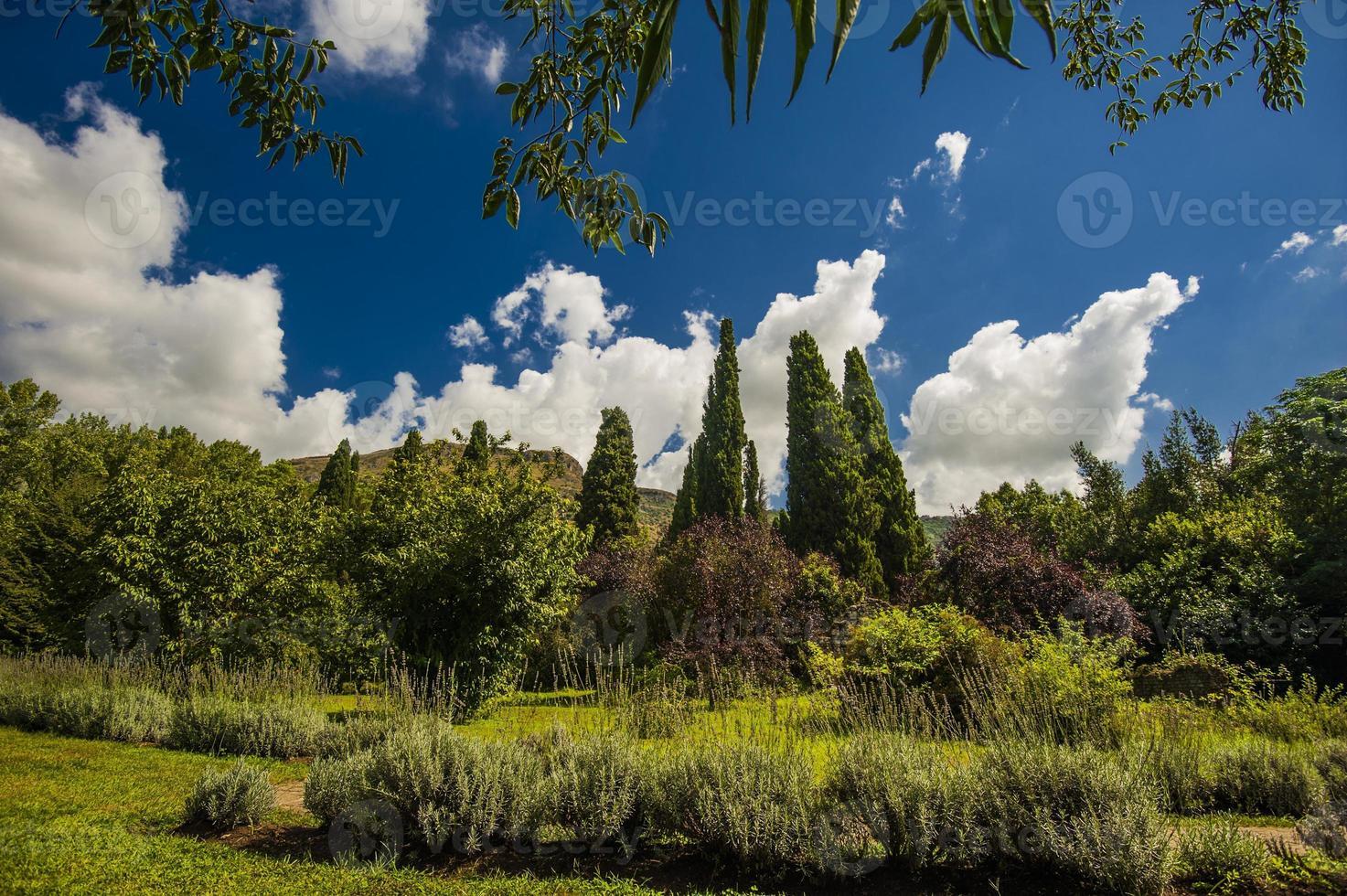 jardin ninfa photo