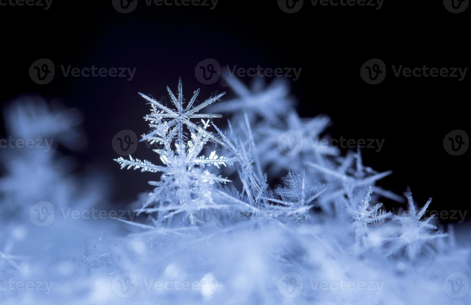 flocons de neige photo