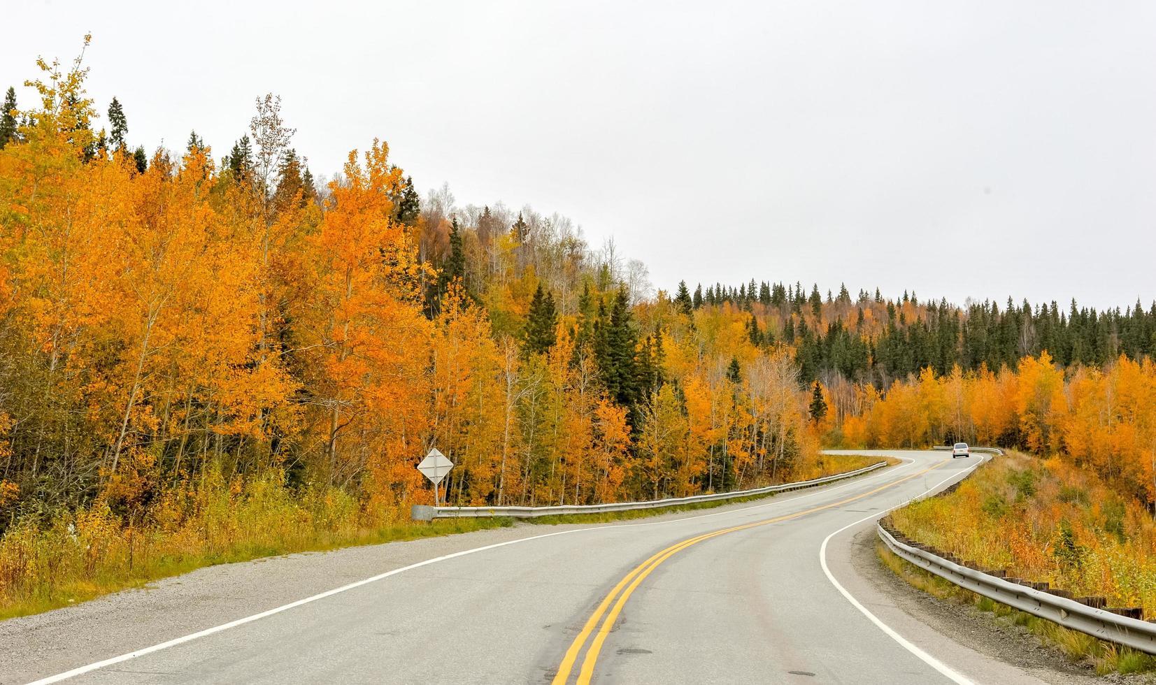 route avec des orangers photo