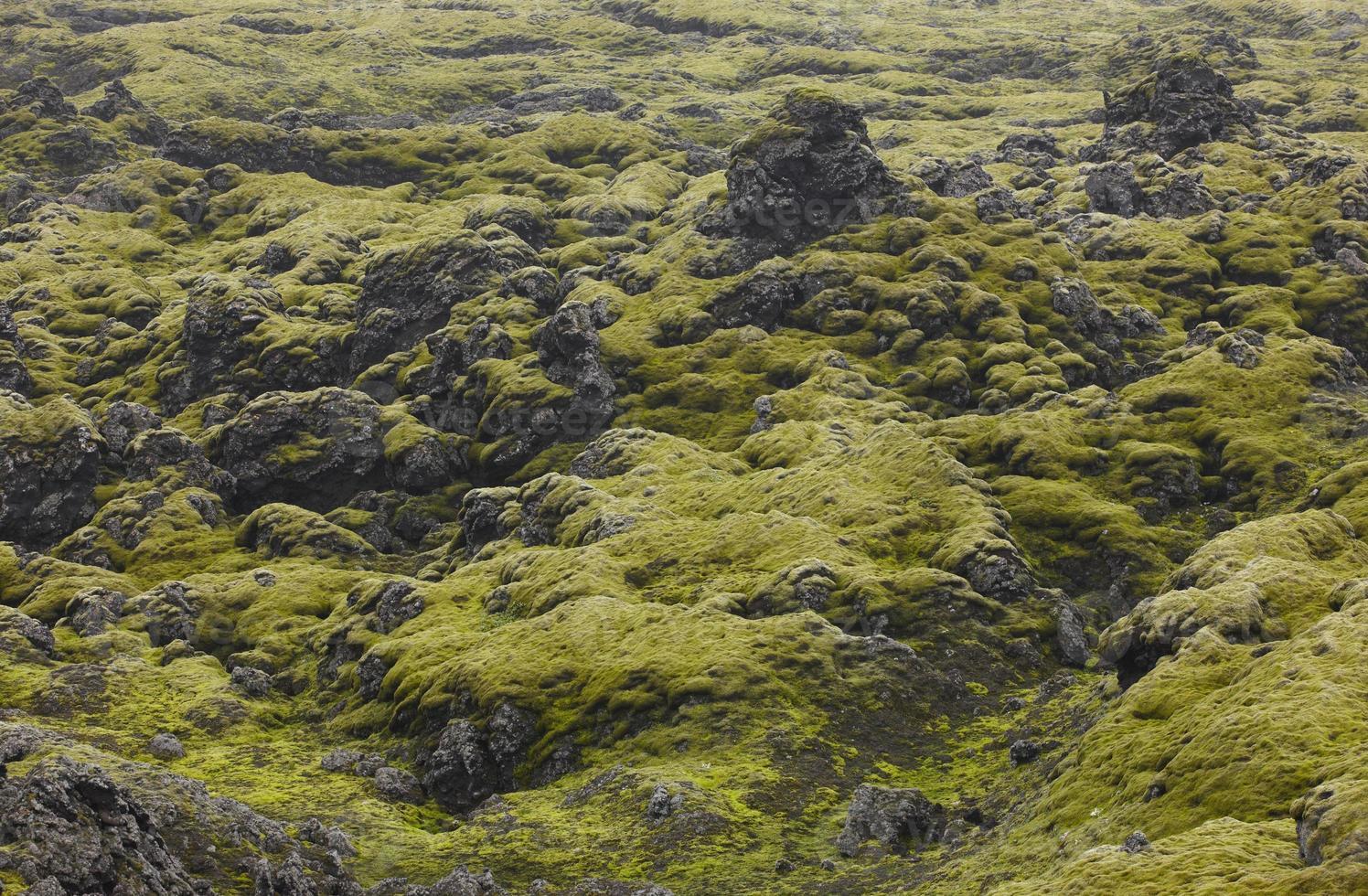 Islande. zone sud. lakagigar. paysage volcanique. photo