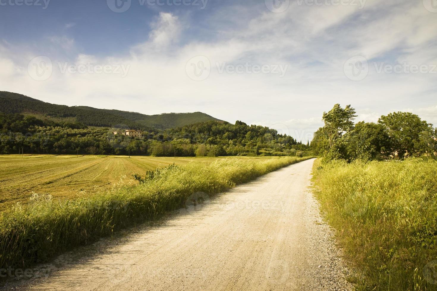 sentier dans la campagne toscane photo