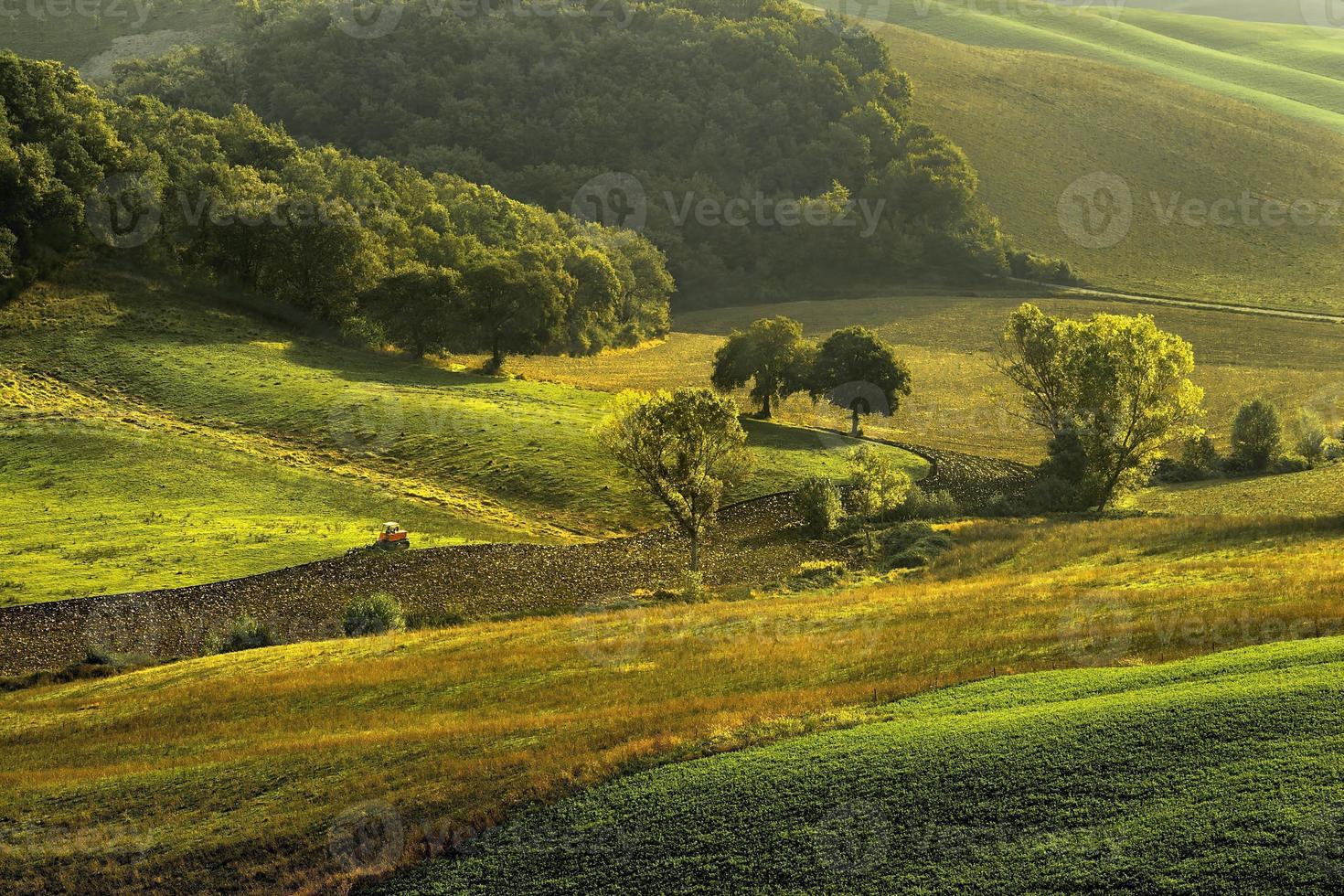 Toscane - panorama du paysage, collines et prairie, toscana - italie photo