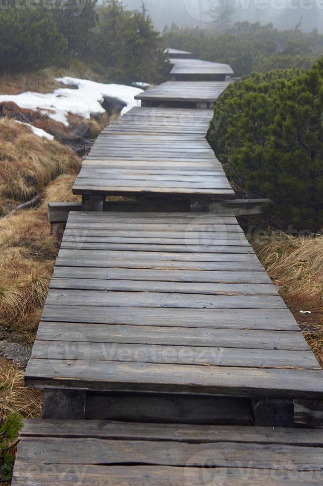 pont en bois sur un sentier de montagne dans le brouillard photo