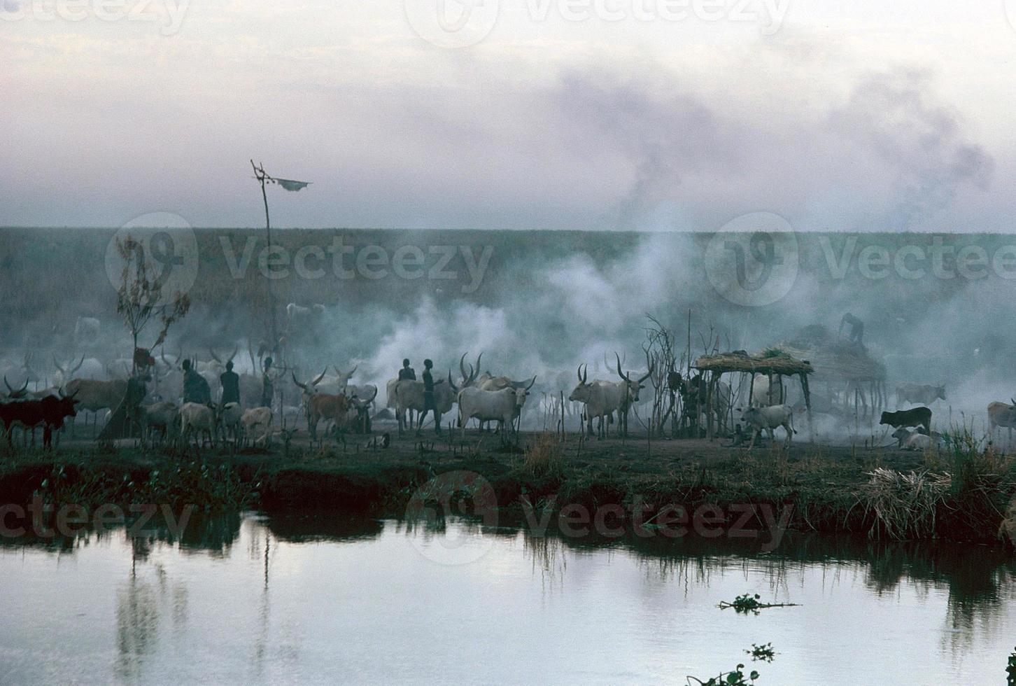 village du nil dans le sud du soudan photo