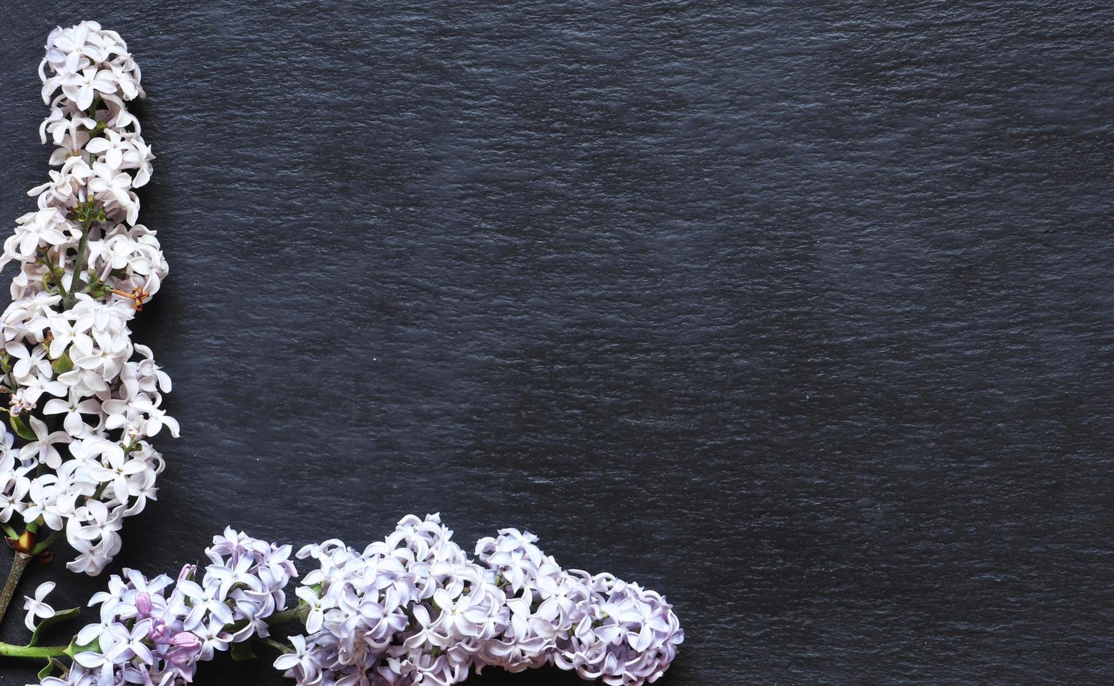 fleurs lilas sur fond d'ardoise photo