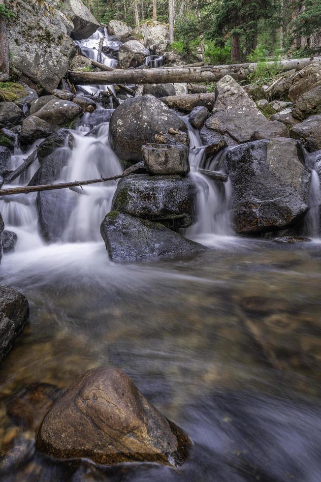 Calypso cascades dans le parc national des Rocheuses photo