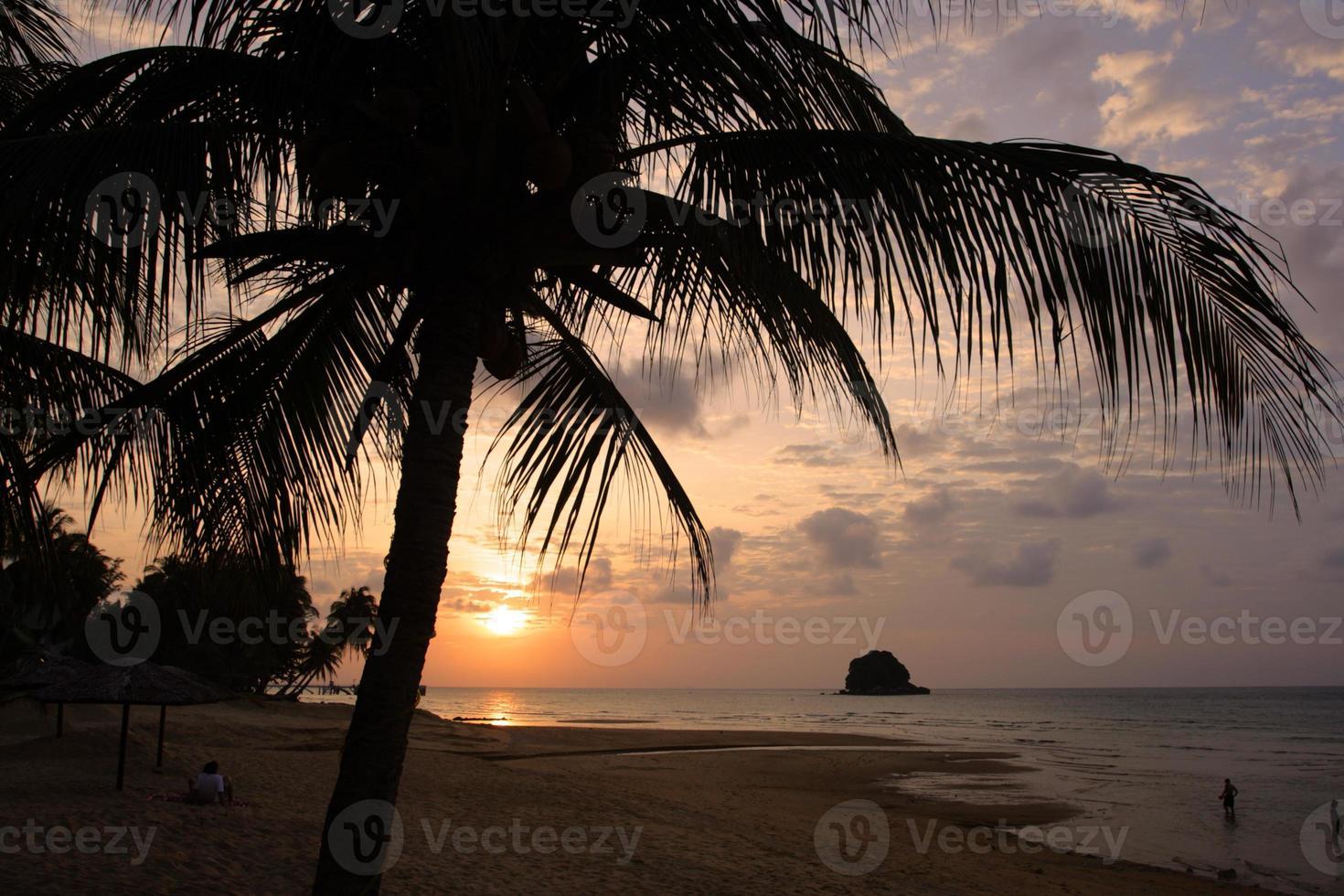 île de Tioman, Malaisie photo