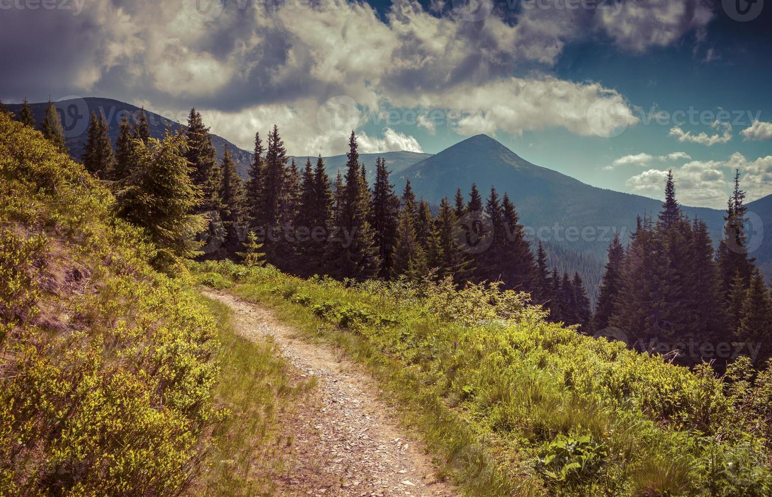 paysage d'été coloré dans les montagnes photo